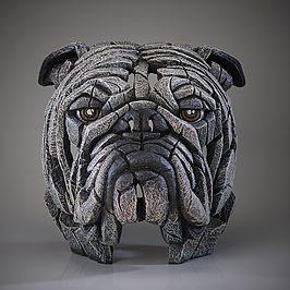 Bulldog Bust - White